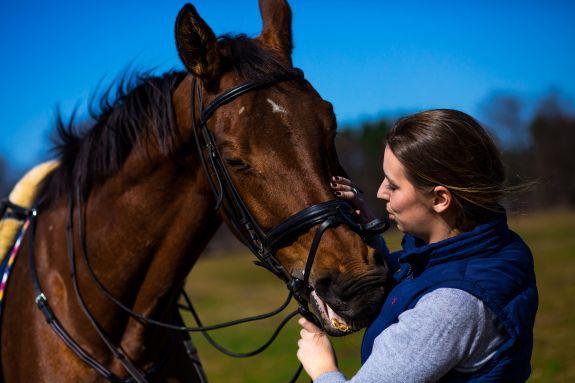 sesja konie